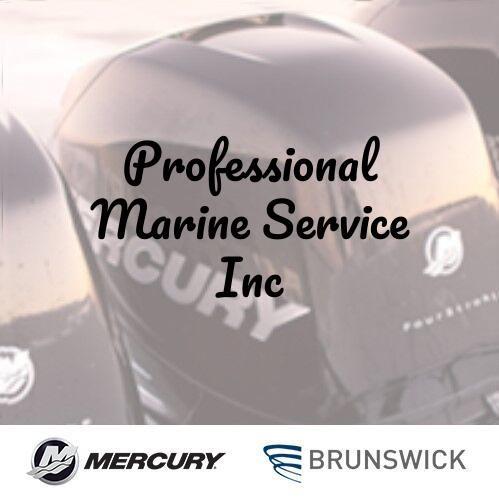 Professional Marine Service Inc