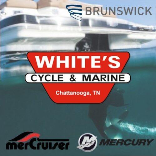 Whites Cycle & Marine